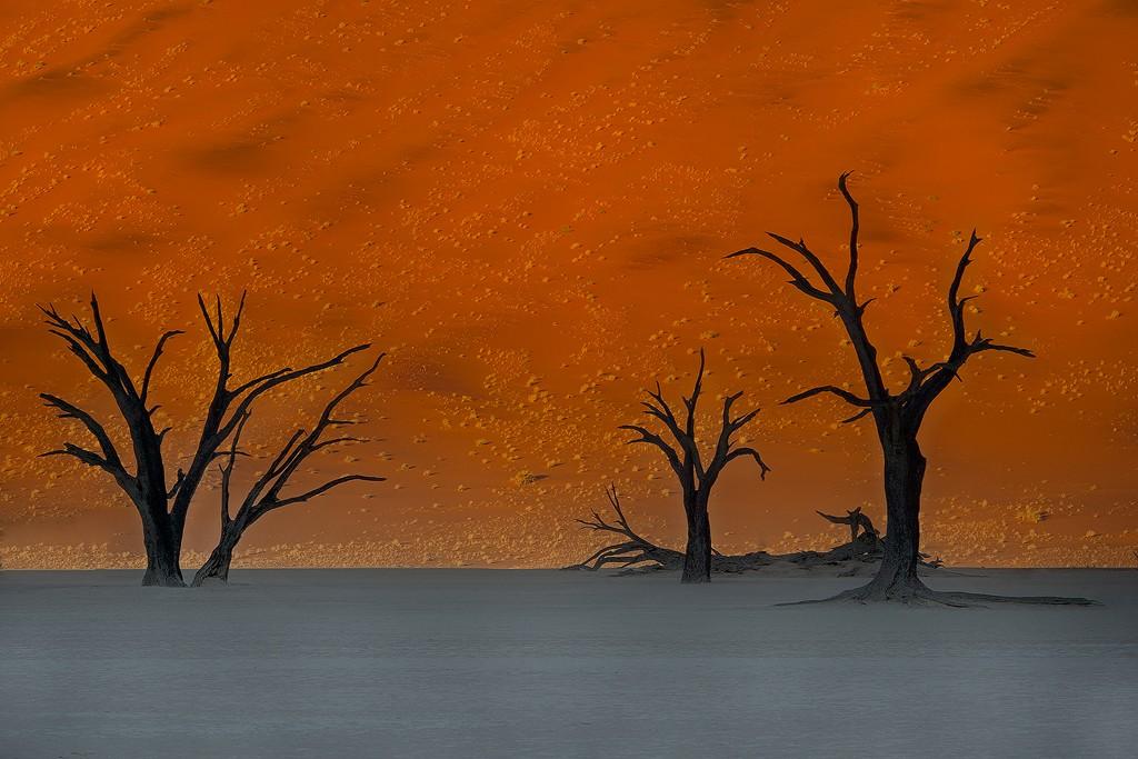 Sunrise Sossusvlei Namibia